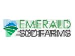 RMSG-Emerald-logoW150